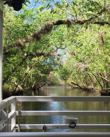 DeLand, FL: Blue Heron River Tours