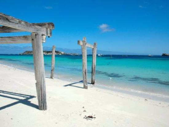 Hamelin Bay, أستراليا: Hamelin Bay