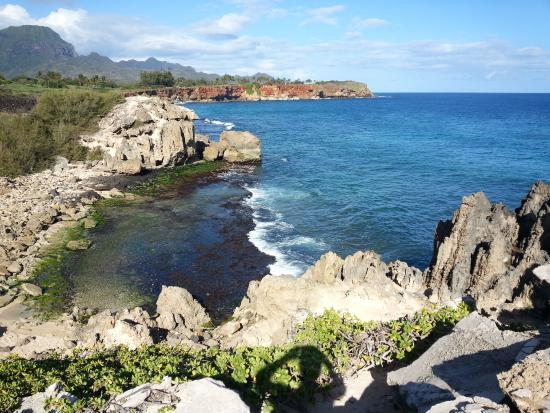 写真Kauai Cove枚
