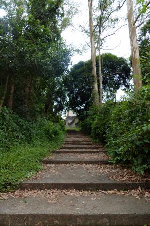 rua da gruta jardim vitoria : gruta 1 - Foto de Parque Ecol?gico da Gruta Santa Luzia ...