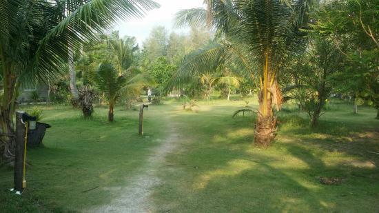 Noren Resort: Miljöbilder längs promenaden till stranden