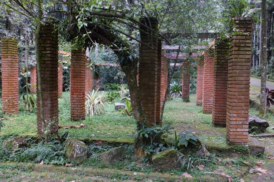 Maua: colunas
