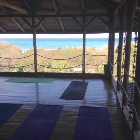 Horizon Yoga Center & Tea House Photo
