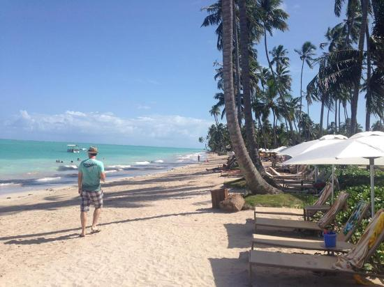 praia em frente ao resort picture of grand oca maragogi resort rh tripadvisor com
