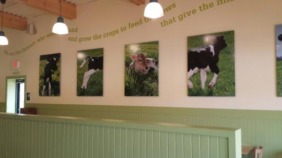 The Farmer's Cow Creamery