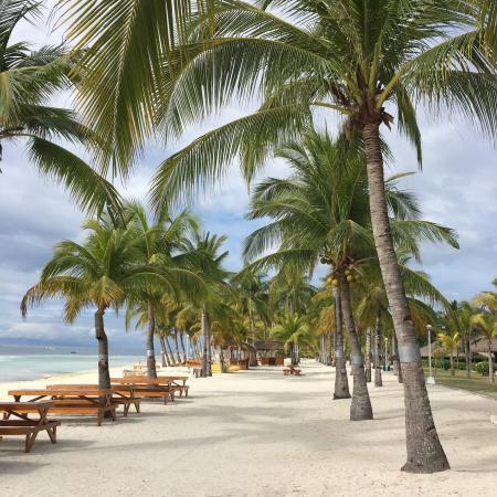 photo0 jpg picture of bohol beach club panglao island tripadvisor rh tripadvisor com
