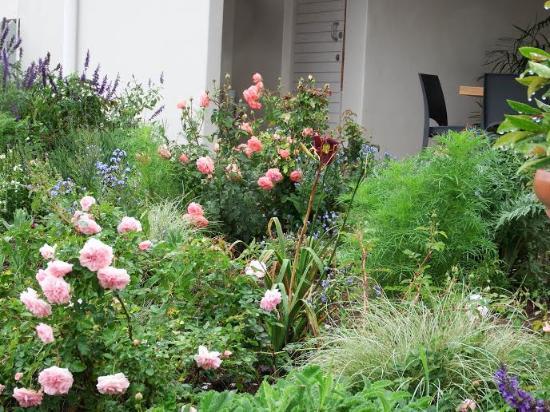 The Rose Garden: Our veranda overlooks the garden
