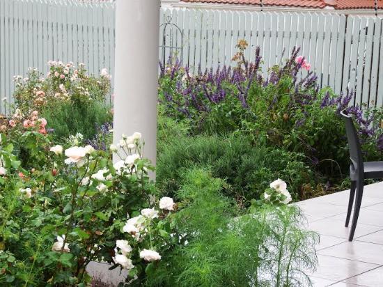 The Rose Garden: A view from the verandah