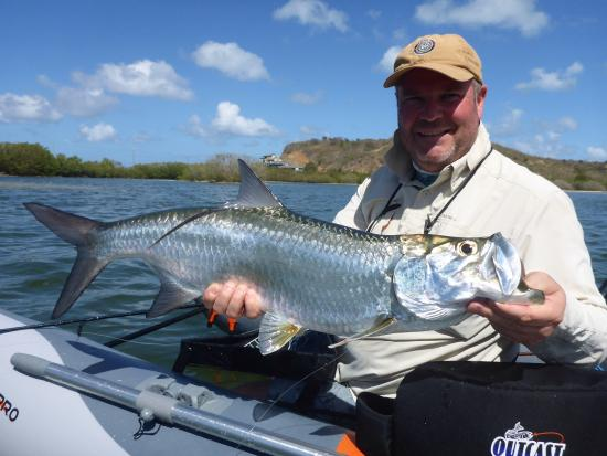 Picture of antigua fly fishing light tackle for Randys fishing trips