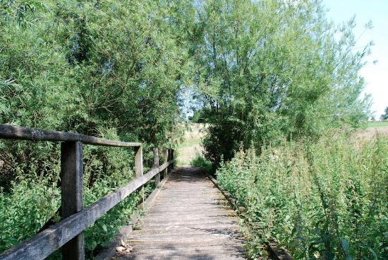 Extertal, Deutschland: Beautiful walking areas around the farm