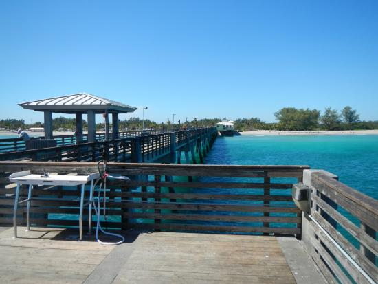 Friendly picture of dania beach fishing pier dania for Dania beach fishing pier