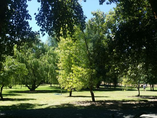 Picnic Area Picture Of Mount Lofty Botanic Garden