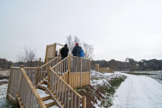 Kirkpatrick Fleming, UK: One of the stands at Westand's Country Park