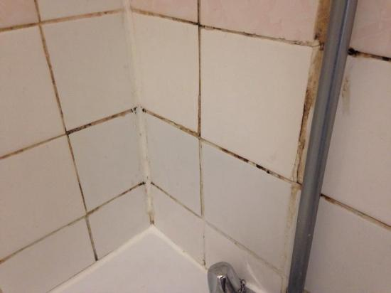 bathroom reeked of stale cigarettes and cistern dripped all