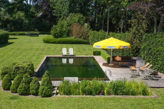 B&B Basil : garden with natural swim pond