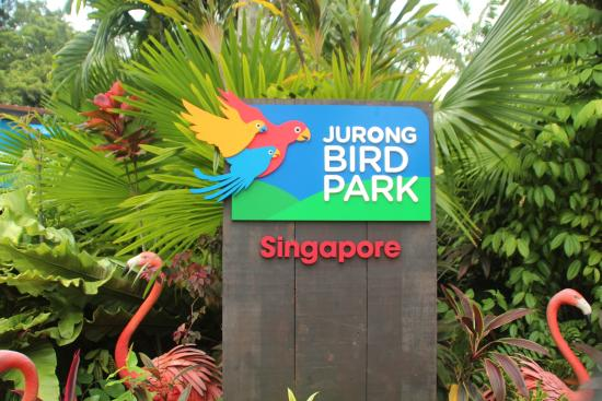 Image result for jurong singapore
