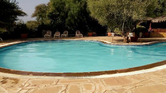 Pool - Kibo Safari Camp Photo
