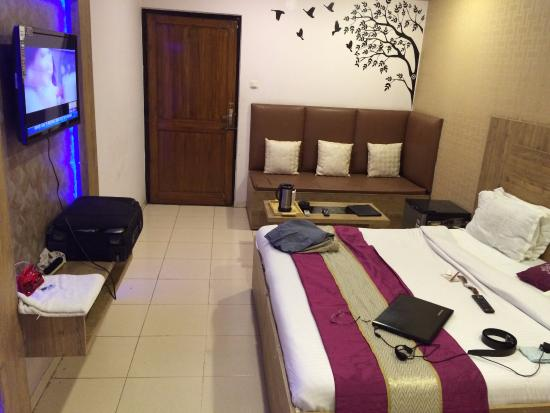 Hotel Gagan Plaza : A decent Room otherwise