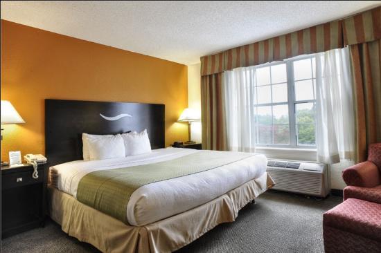 Quality Inn & Suites : King Room