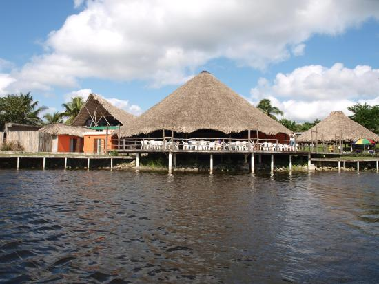tower hill lagune am new river belize picture of lamanai belize rh tripadvisor co za