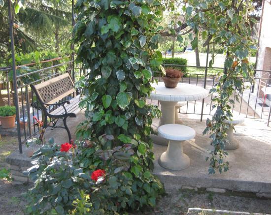 L'Albergaccio : garden