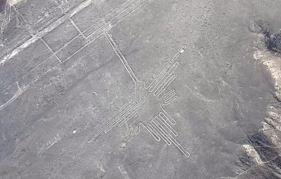 Lineas de Nazca: Colibrí