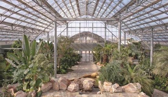 Bayan Botanical Garden