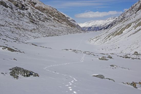 Hotel Roseg Gletscher-bild