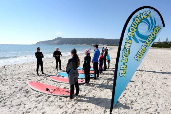 Burnie, Australië: Sea-Lyons Aquatics Surf School