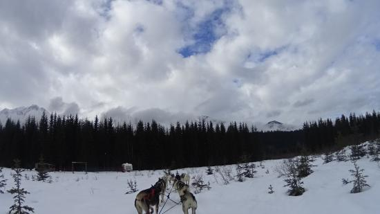 Goleen, Canadá: Beim Schlittenfahren