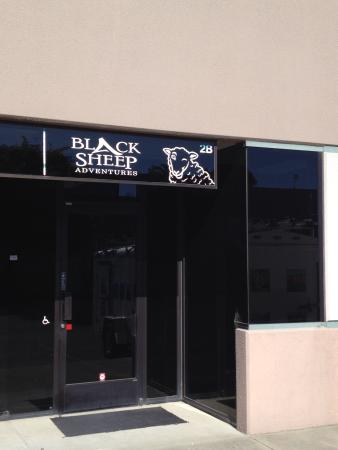 Black Sheep Bike Rental