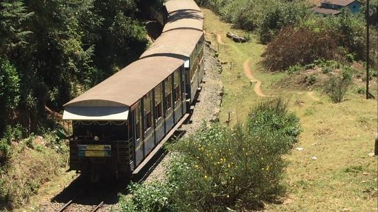 Image result for train to lovedale ooty