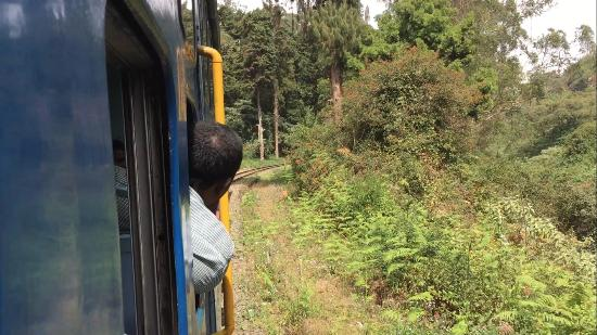 Nilgiri Mountain Railway: View from the train on the way to Lovedale from Coonoor