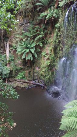Beauchamp Falls: IMAG0436_large.jpg