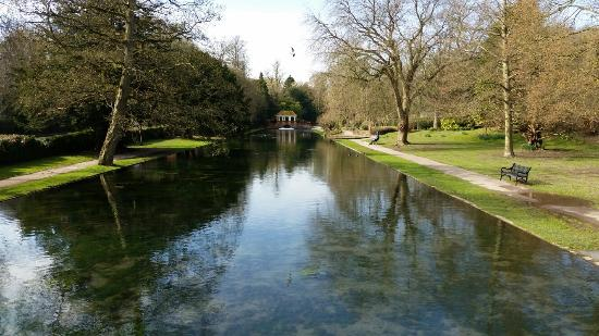 River, UK: Views  in the park