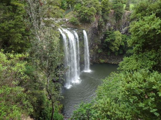 Whangarei, Nya Zeeland: The falls