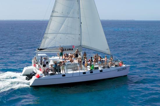 Allura Catamaran