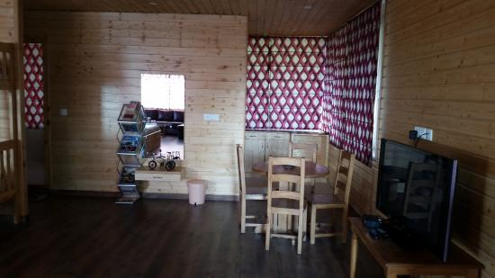 room with bunk bed attached bath and kitchen picture of soham rh tripadvisor co nz