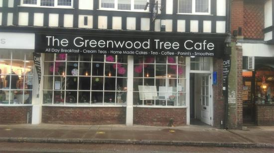 ‪The Greenwood Tree‬