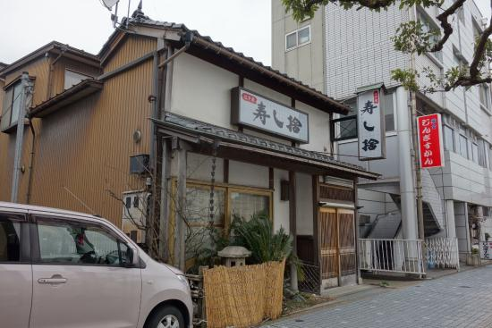 Sushi Sute