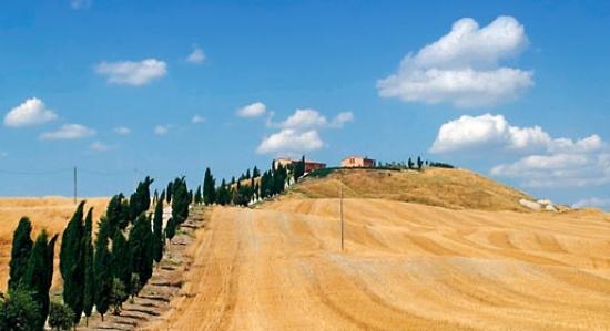 San Giovanni d'Asso 사진