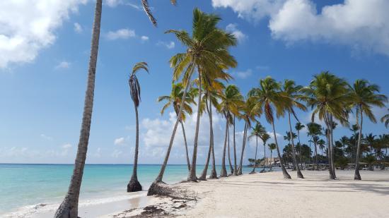 Sanctuary Cap Cana By Playa Hotels Resorts Juanillo Beach