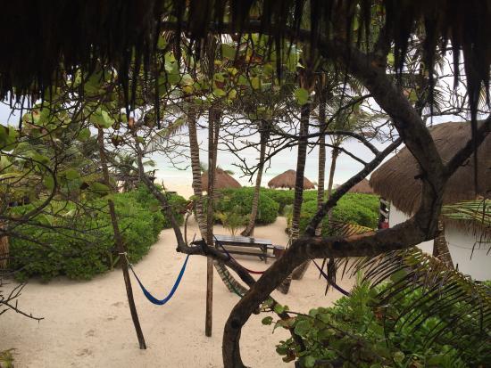 Playa Selva : photo1.jpg