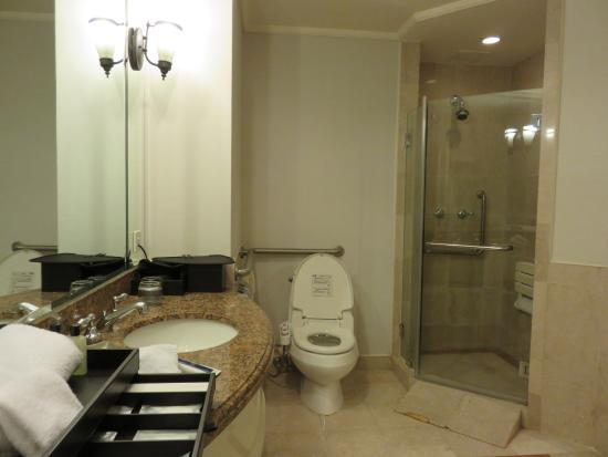 shower stall and toilet in wheelchair accessible room picture
