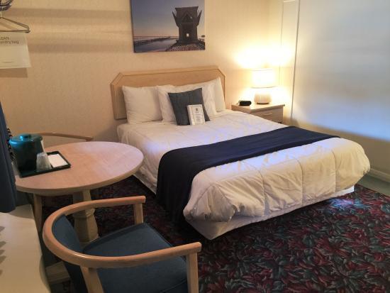 Cedar Motor Inn : Single queen bed, Room#110