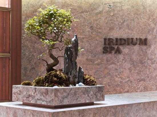 ‪Iridium Spa‬