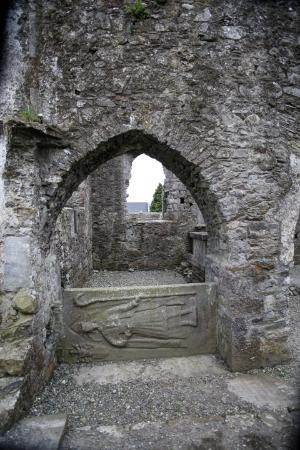 St Mary's Abbey, Duleek