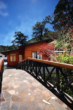 Hotel Casa Grande Bambito: Jardines Casa Grande