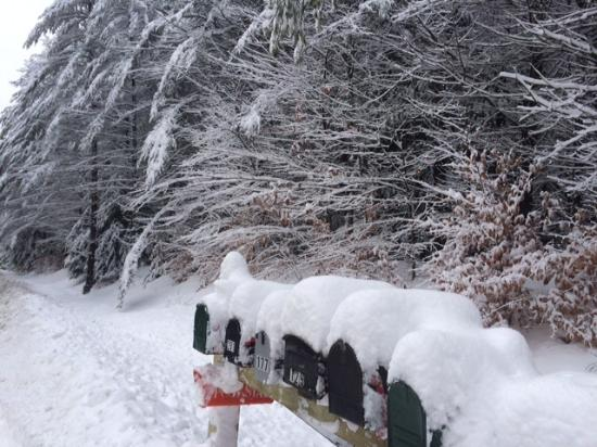 Chestertown, Nova York: snowy mail boxes