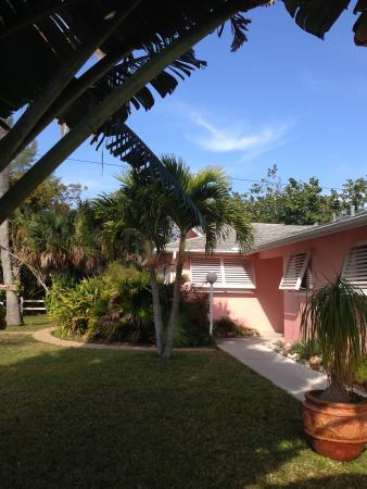 West-End Paradise: West End Paradise yard & part of rental units